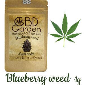 CBD Blueberry 7.4% CBD 1g SUSZ KONOPNY CANNABIS SATIVA
