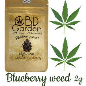 Susz CBD.Susz konopny. CBD Garden Blueberry 7.4% CBD.