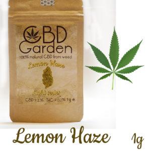 CBD Lemon Haze 9.2% CBD 1g SUSZ KONOPNY CANNABIS SATIVA