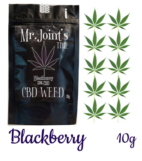 Susz konopny CBD Blackberry
