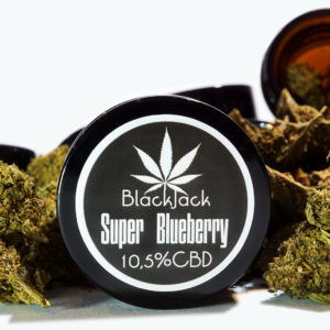 CBD Super Blueberry 10,5% 1g SUSZ KONOPNY CANNABIS SATIVA