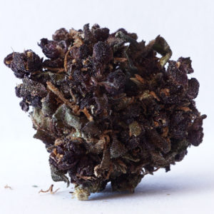 Purple Haze 11,9% 5g SUSZ KONOPNY CANNABIS