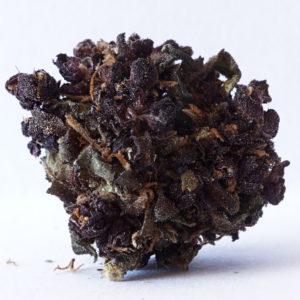 CBD Purple Haze 11,9% 5g SUSZ KONOPNY CANNABIS